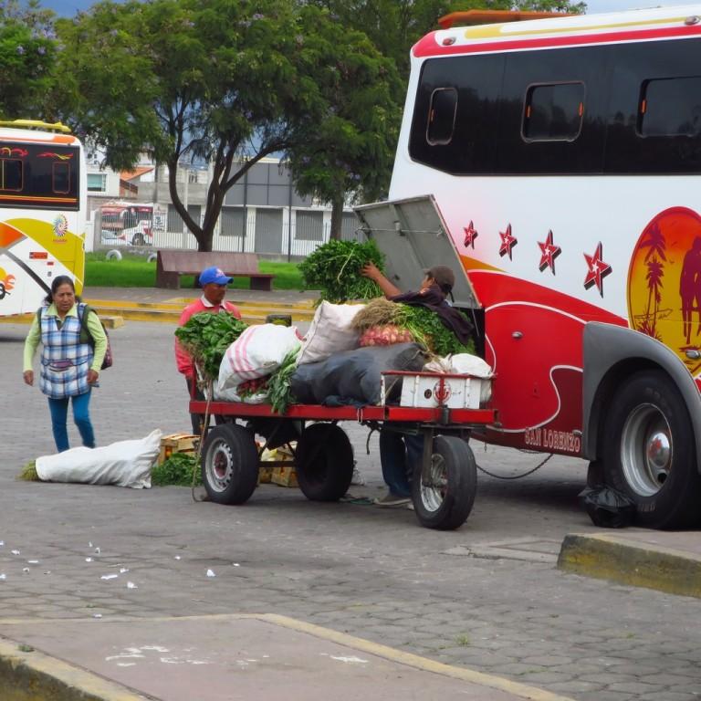 Südamerika_0647